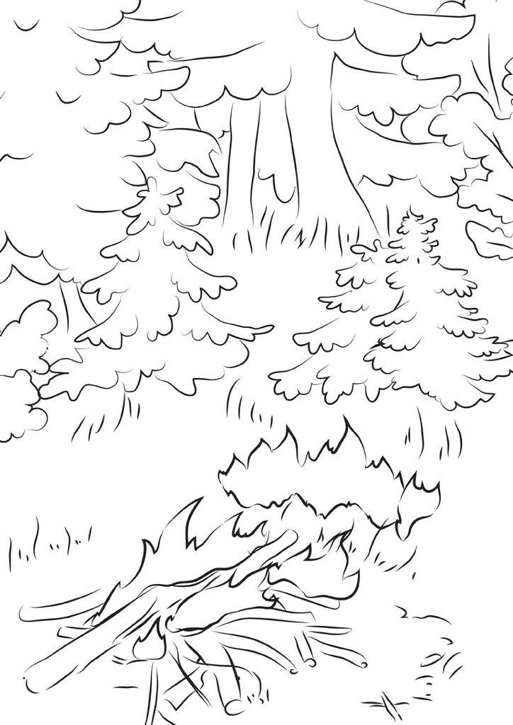 если раскраска берегите лес от огня создания такого рисунка