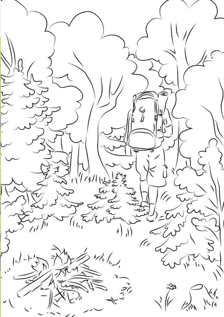 Рисунок пожара в лесу карандашом